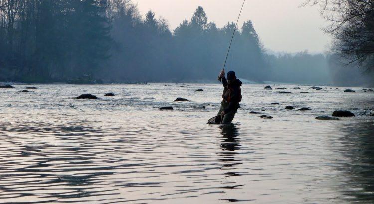 Confinement : vers une interdiction complète de la pêche….
